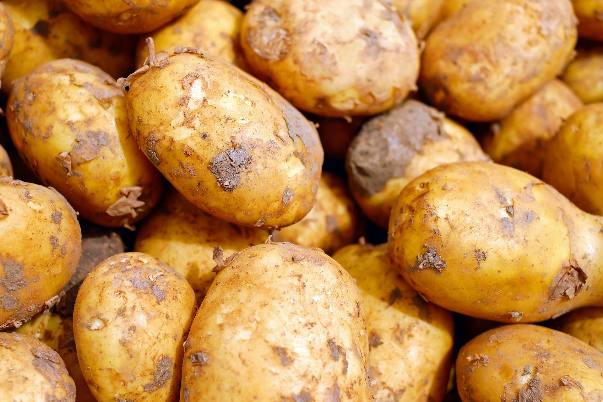 Покупательная способность севастопольцев в расчете на картофель является одной из самых низких в РФ