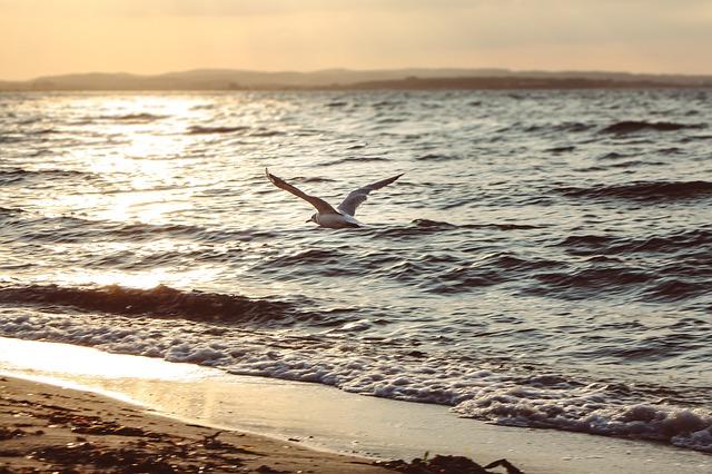 В Крыму и Севастополе 30 августа сохранится теплая погода