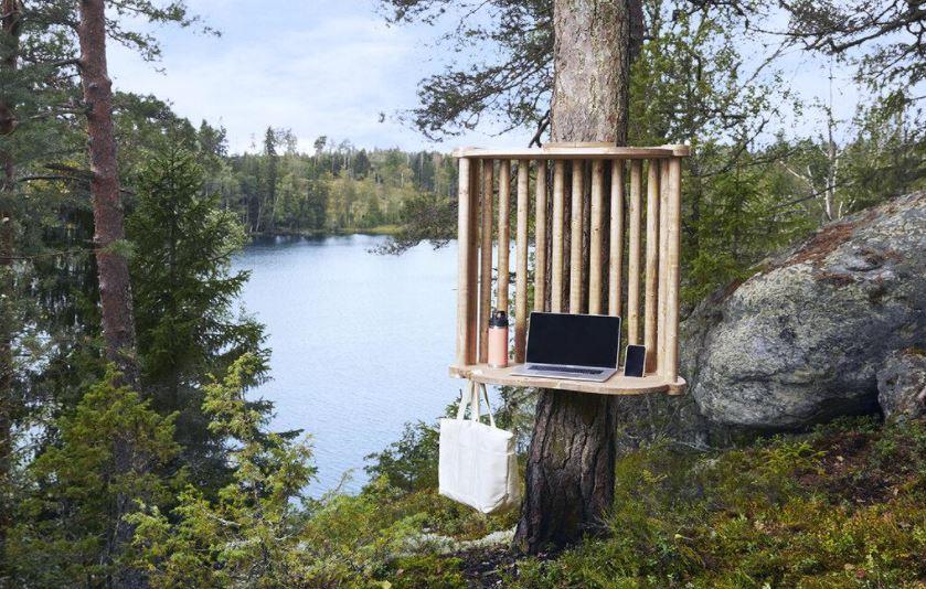 В Финляндии начали открывать офисы на деревьях