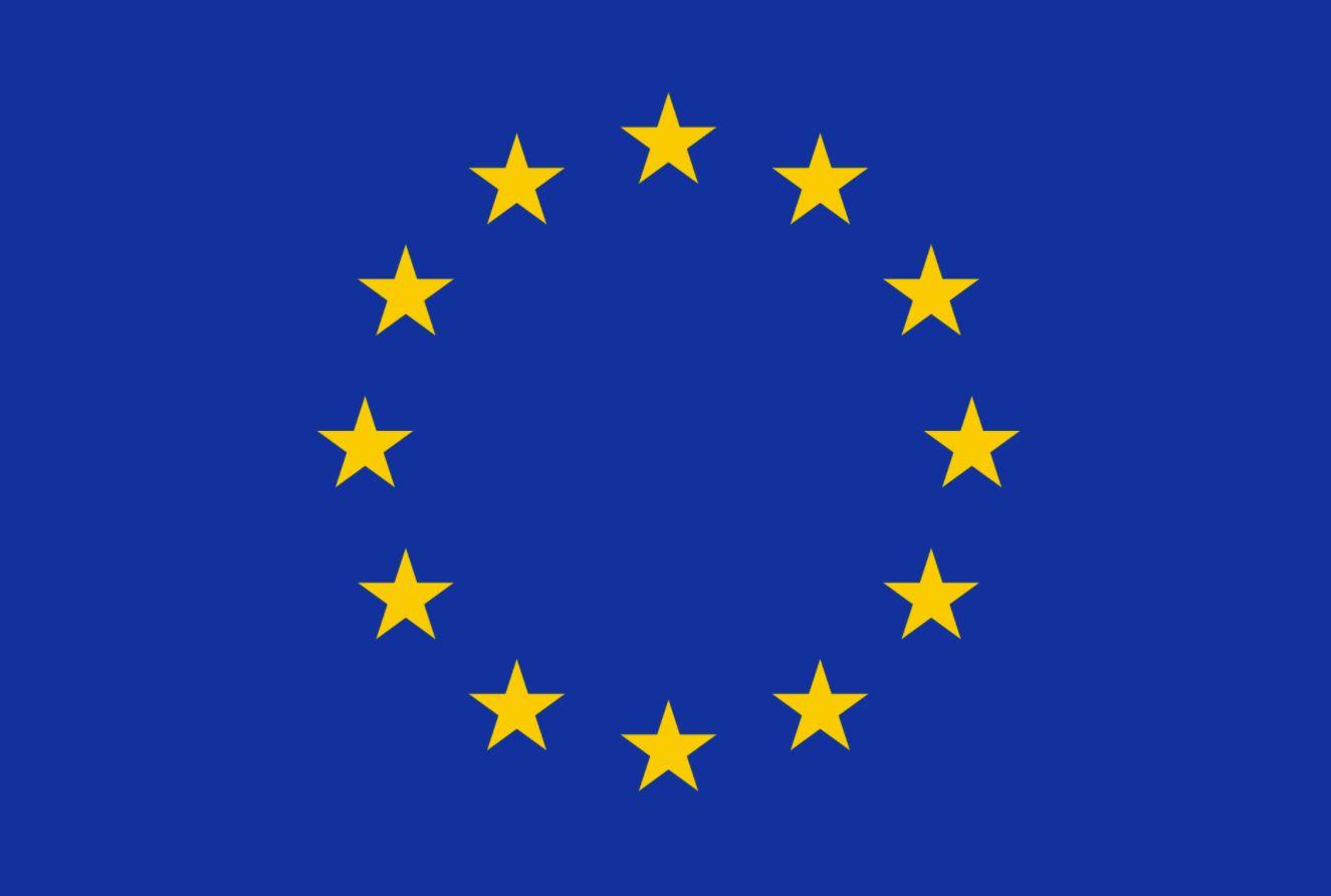 Евросоюз заявил о серьезных нарушениях на выборах в Госдуму