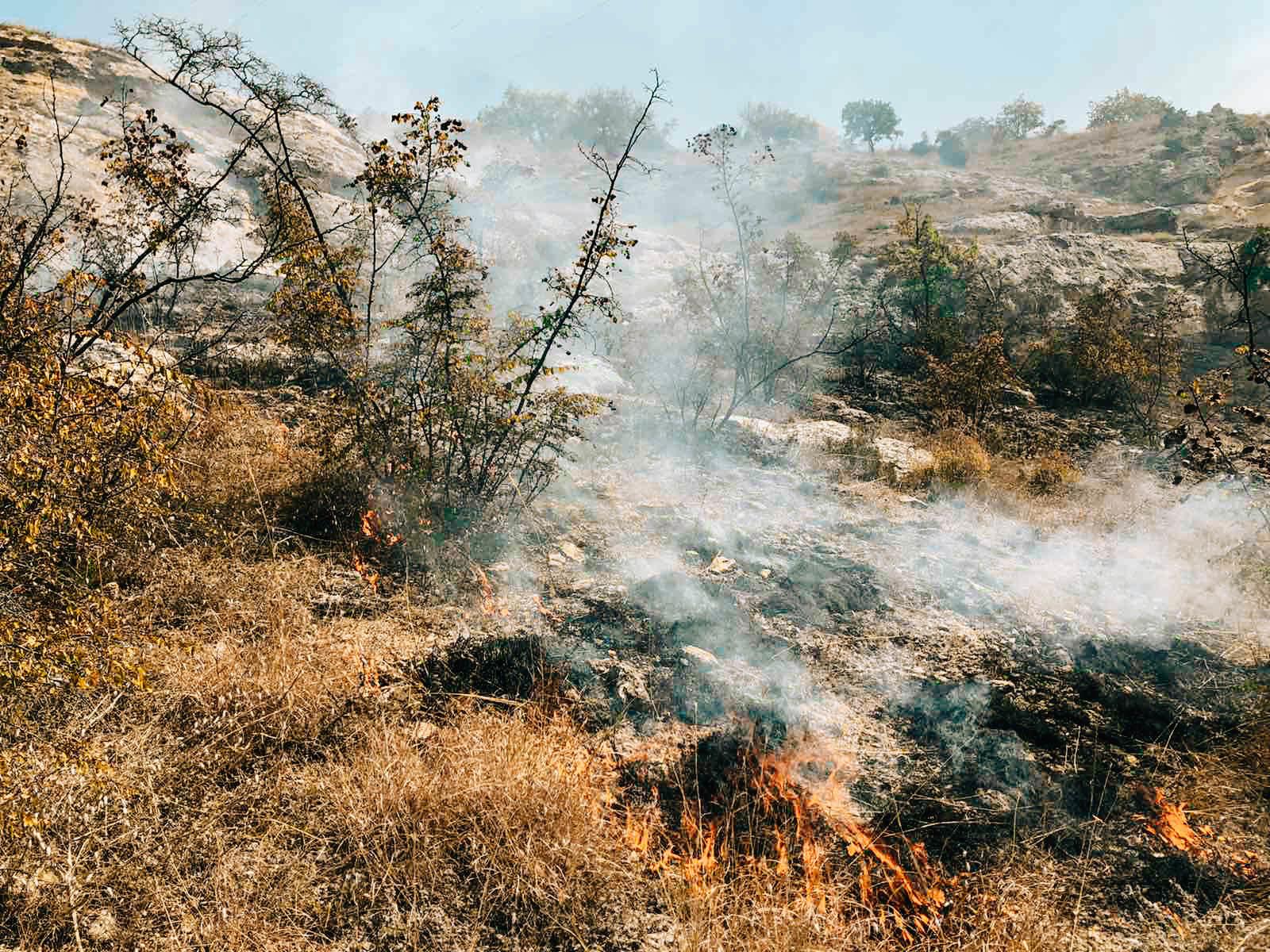 В Севастополе в Килен-балке горел гектар травы